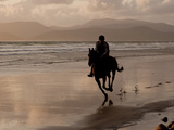 A Rider Exercises a Horse in the Evening on the Beach at Rosbehy Point Photographic Print by Kenneth Ginn