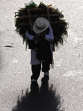 A Silletero Carries Flowers to Sell at the Flower Festival Parade Photographic Print by Kike Calvo