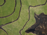 Abstract Aerial View of Patterns in Agricultural Fields in Colorado Photographic Print by Pete McBride