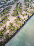 Aerial View of Abstract Patterns Seen in the Dry Colorado River Delta Photographic Print by Pete McBride