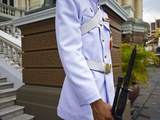 Soldier of the Kings Guard with Rifle and Bayonet at the Throne Hall Photographic Print by Jason Edwards