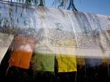Buddhist Prayer Flags Photographic Print by Alison Wright