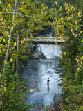 A Fisherman in Bighorn Creek, Part of the Kootenay River System Photographic Print by Joel Sartore