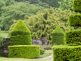 A Topiary Garden in Spring Photographic Print by Darlyne A. Murawski