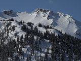 A View of Snow-Blanketed Whistler Peak Forested with Evergreen Trees Fotografisk tryk af Tim Laman