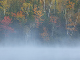 Dawn Mist Settles on Connery Pond Photographic Print by Michael Melford