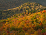 Fall Colors in the High Peaks Region of Adirondak Park Photographic Print by Michael Melford