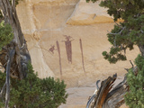 The Head of Sinbad Pictograph Photographic Print by Greg Winston