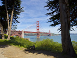 The Golden Gate Bridge Viewed from a Nearby Park Photographic Print by Mike Theiss