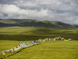 Prayer Flags Hanging Enroute to Nagqu from Baqen Photographic Print by Michael S. Yamashita