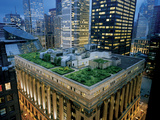 A Green Roof on Chicago's City Hall Photographic Print by Diane & Len Cook & Jenshel