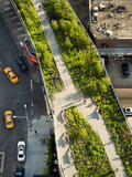 The High Line, a Park Built on a Section of Abandoned Rail Line Photographic Print by Diane & Len Cook & Jenshel