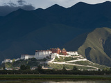 The Potala Palace Photographic Print by Michael S. Yamashita