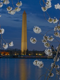 Washington Monument with Cherry Trees in Bloom at the Tidal Basin Photographic Print by Paul Sutherland