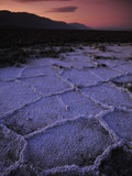 Salt Flats and Polygons on the West Side Road Photographic Print by Raul Touzon