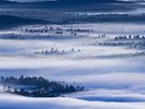 Morning Fog Hangs over Saranac Lake Canoe Area Fotografisk trykk av Michael Melford
