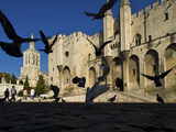 Birds Fly Outside the Gothic Palais Des Papes Photographic Print by Jim Richardson