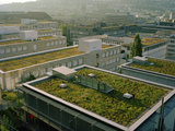 Regulations Require All New, Flat-Roof Buildings to Have Green Roofs Photographic Print by Diane & Len Cook & Jenshel