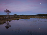 Moonrise over Big Simon Pond Photographic Print by Michael Melford