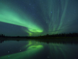 The Aurora Borealis Streaks the Sky Above Birch Creek Fotografisk tryk af Michael Melford