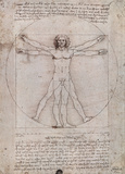Vitruvian Man - Leonardo da Vinci Poster Prints