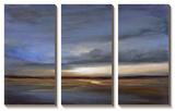Salt Flats Print by Sheila Finch