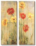 Poppy Serenade Posters by Elizabeth Jardine