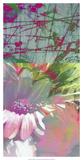 Pink Wonders I Kunstdrucke von Ricki Mountain