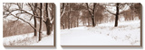 First Snow I Prints by Mike Sleeper