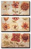 Tangerine Dream III Prints by Elizabeth Jardine