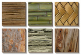 Nature's Textures Posters