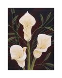 Botanical Elegance II Giclee Print by Yvette St. Amant