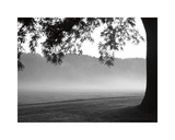 Fog in the Park I Giclee Print by Gary Bydlo