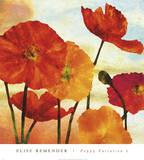Poppy Variation 2 Kunstdrucke von Elise Remender