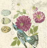 Bird Study 4 Posters par Paula Scaletta