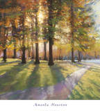 Shadows Posters by Amanda Houston