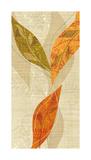 Natural Harmony II Giclee Print by Tandi Venter