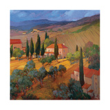 Coral Sunset Tuscany Giclee Print by Philip Craig