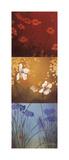 Aura Giclee Print by Don Li-Leger