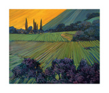 Champange Vineyards Giclee Print by Philip Craig
