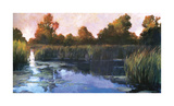 The Lily Pond Giclee Print by Philip Craig