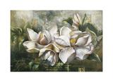 Magnolias al amanecer Lámina giclée por  Meng