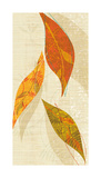 Natural Harmony I Giclee Print by Tandi Venter