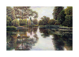 Nature's Tapestry Giclee Print by David Howells