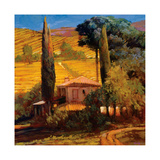 Tuscan Morning Light Giclee Print by Philip Craig