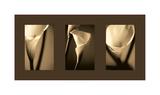 Divinity Impression giclée par Cinzia Ryan