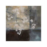 Spa Blossom II Giclee Print by Laurie Maitland