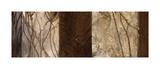 Coppers Edge I Giclee Print by Linda Thompson