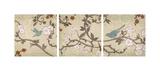 Songbird Giclee Print by Tandi Venter