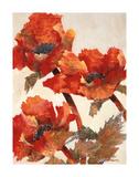 Poppies II Giclee Print by Joyce H. Kamikura